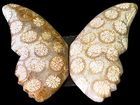 Batterfly Agate Pair 1.jpg